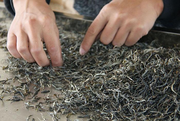 东卓茶人,敬天爱茶,用心做茶,分享心水好茶