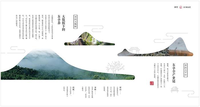 茶品牌画册排版